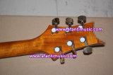 Fotorezeptoren reden an,/Mahagonikarosserie u. Stutzen,/Afanti elektrische Gitarre (APR-044)