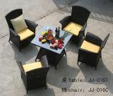 屋外の家具、PEの藤の家具、(JJ-016 T/C)