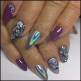Pó holográfico do Glitter do arco-íris de prata de Holo Spectraflair