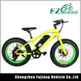 bicicleta eléctrica del neumático gordo 20inch