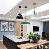 실내 점화를 위한 간단한 작풍 녹색 알루미늄 거는 램프