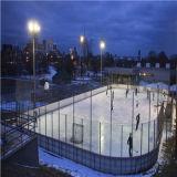 Polycarbonaat voor de Raad van het Glas op het Hof van het Hockey