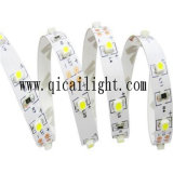 Aprobación flexible de la tira Ce/RoHS de IP67 SMD LED 2835