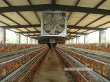 Absaugventilator-grosse Ventilator-Küche-Ventilator-Kühlvorrichtung-Gewächshaus-Ventilator-Kühlsystem-Ventilations-Kühlvorrichtung