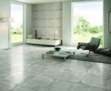 Nueva llegada de porcelana piso en Sri Lanka (AJCE01 AJCE02)