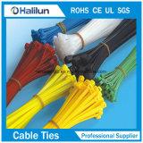 Edelstahl-Platte innerhalb des Verschluss-Kabelbinders