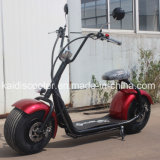 Lithium Electrical Motorcycle 1000W Fat Tire Harley EEC Certificado
