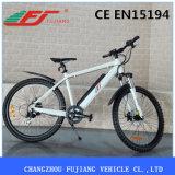 El verde caliente de la potencia verde de la venta rueda la bici eléctrica