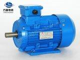 Ye2 0.75kw-6 hoher Induktion Wechselstrommotor der Leistungsfähigkeits-Ie2 asynchroner