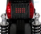 ヘッドライトが付いているグリーン電力のリチウム電池2の車輪のスクーター