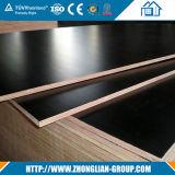 Contre-plaqué du film publicitaire 19mm Shandong pour la construction