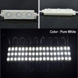 Módulo ahorro de energía del LED para hacer publicidad de muestras