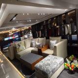 Софа самомоднейшей конструкции секционная с тканью высокого качества для живущий мебели Fb1112 комнаты