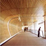 G-Форменный линейный ый ложный потолок для выбора конструктора