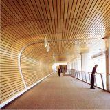 G-Форменный линейный потолок Suspented ложный для выбора конструктора