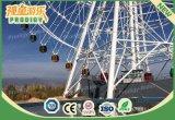 el parque de atracciones grande de los 75m monta la rueda de Ferris gigante del patio