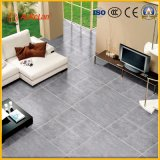Baumaterial-Tintenstrahl-graue rustikale Fußboden-Fliese (D10379)