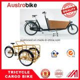 Salida eléctrica Ebike de la pizza de la bici del cargo del triciclo del cargo de la bici del cargo