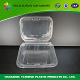 Contenitori sicuri di imballaggio di plastica dell'alimento a gettare