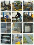 Praktischer und konkreter Stahlstab-kratzender Zaun