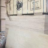 Pegamento del grado Carb2 de la madera contrachapada C/D de la base del álamo de la madera contrachapada del abedul blanco