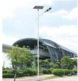Luz de rua solar branca pura com 3 anos de garantia