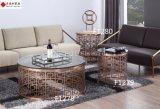 Tavolino da salotto quadrato con la parte superiore del marmo della natura ed il piedino dell'acciaio