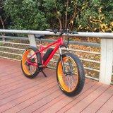 Bicicletta elettrica Ebike della bici 500W della montagna grassa popolare della gomma MTB