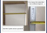 Module de sûreté biologique d'échappement de la classe II 100% (BHC-1300IIA/B3)