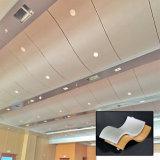 Plafond faux en aluminium décoratif insonorisé pour le contact hall