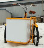 Poca bici para señora Ride