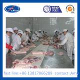 De Diepvriezer van het vlees voor Verkoop 100t