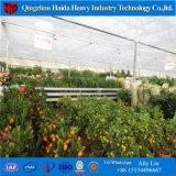 Invernadero vegetal de cristal plástico de Agticulture para la venta