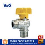 Vávula de bola del gas Ss304/Ss316L (VG-A63021)