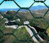 Rectángulo hexagonal del acoplamiento de alambre de Anping, fábrica hexagonal del acoplamiento de alambre del rectángulo de Gabion, cercado hexagonal galvanizado del acoplamiento de alambre