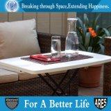 옥외 개인적인 조정가능한 테이블
