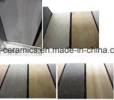 Tuile rustique de porcelaine de matériau de construction avec deux surfaces différentes