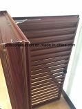 Ventana de aluminio modificada para requisitos particulares del obturador del marco con la lámina fija