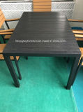 Juego de mesa de jardín café del restaurante de plástico de aluminio Silla de madera (TG-6002)