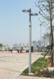 Éclairage de jardin de Bridgelux 40W 50W DEL du CREE IP65 avec du ce