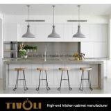 Het vlakke Meubilair van de Keuken van het Project van de Keuken van de Begroting van het Pak (AP099)