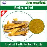 Polvo natural del extracto de la raíz del Coptis del ácido clorhídrico de Berberine
