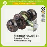 La serratura antica della sfera ha progettato le serrature delle entrate principali con il tasto comune