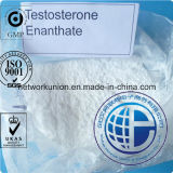 Semi-Finshed Injection Steroid 250mg/Ml 315-37-7 Testosterone Enanthate