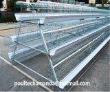 Cage de poulet d'éleveur pour la ferme avicole (un type bâti)