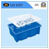 Système de 259# OEM/ODM/caisse réversible empilée par plastique utilisation du marché