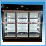 A flor vertical Refrigerated o gabinete/o indicador Refrigerated flor