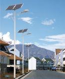 Уличный свет высокого качества допустимый 6m 8m СИД солнечный