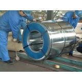 Jisg3302 de calidad superior galvanizó la bobina de acero
