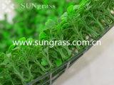 Трава стены Decrative искусственная для крытого и напольного украшения (SUNW-MZ00027)